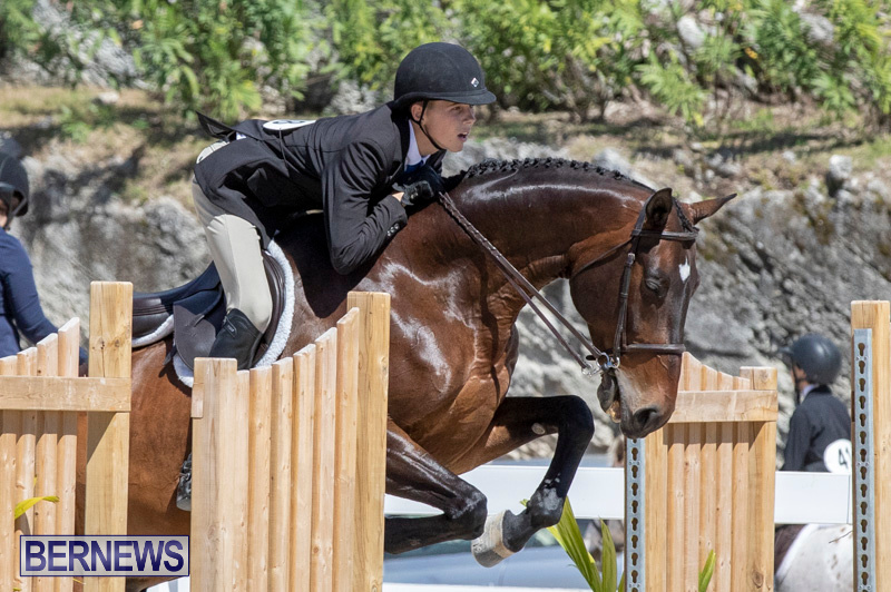 RES Hunter Jumper Show Bermuda, March 16 2019-0557