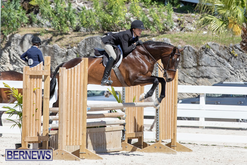 RES Hunter Jumper Show Bermuda, March 16 2019-0558