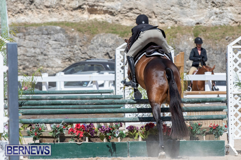RES Hunter Jumper Show Bermuda, March 16 2019-0563