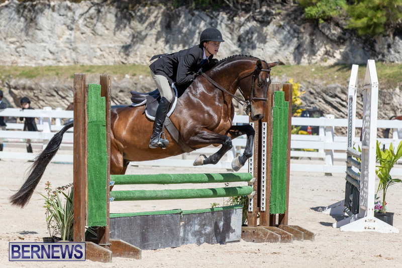 RES Hunter Jumper Show Bermuda, March 16 2019-0568