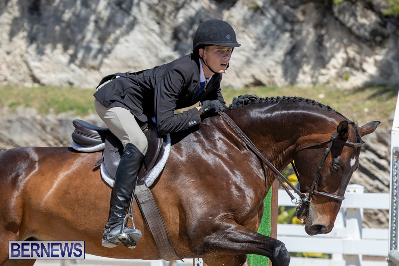 RES Hunter Jumper Show Bermuda, March 16 2019-0569