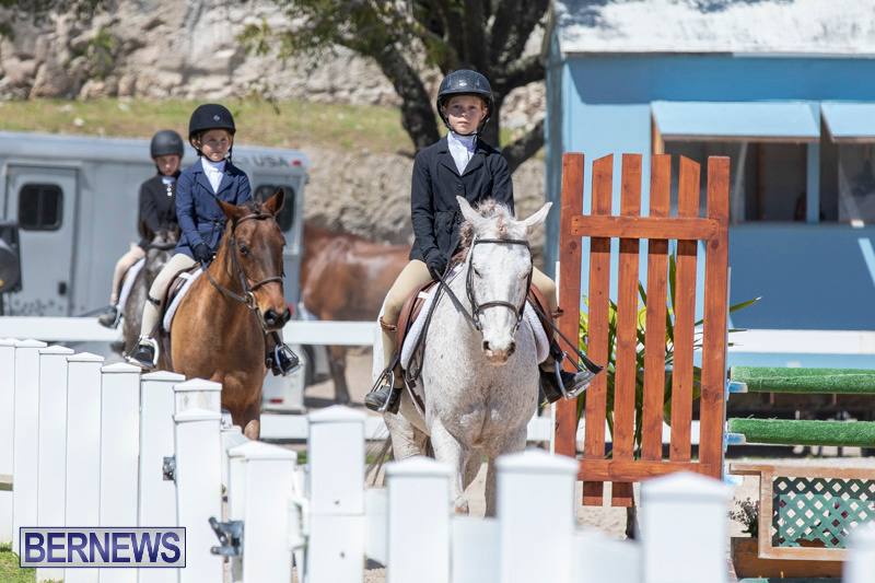 RES Hunter Jumper Show Bermuda, March 16 2019-0578