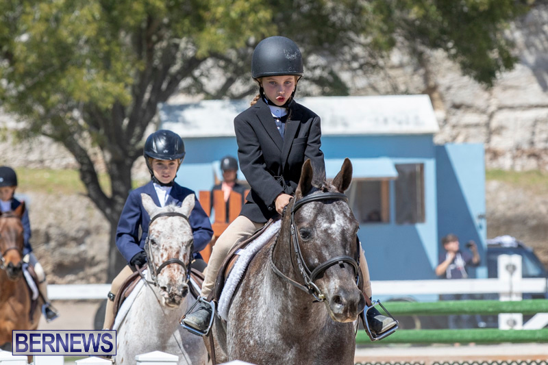 RES Hunter Jumper Show Bermuda, March 16 2019-0581
