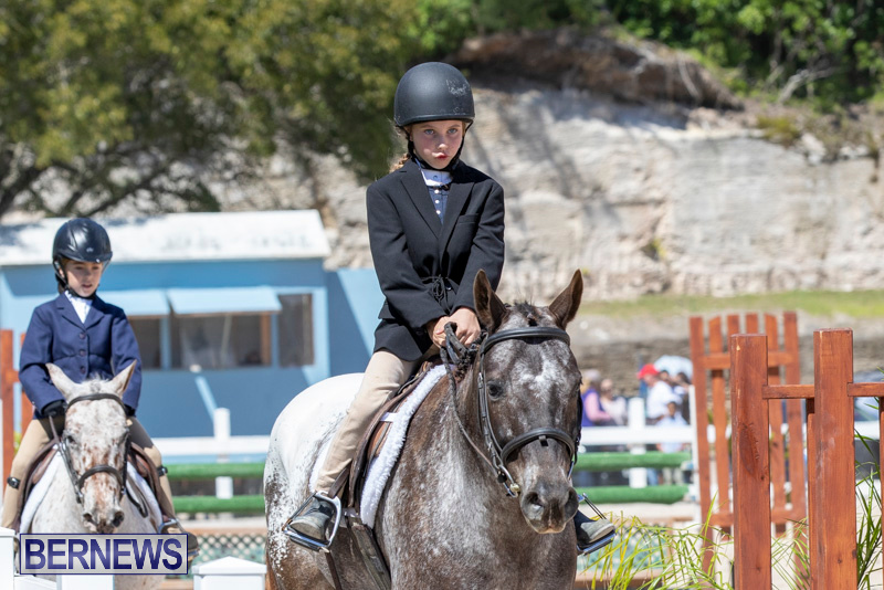 RES Hunter Jumper Show Bermuda, March 16 2019-0582