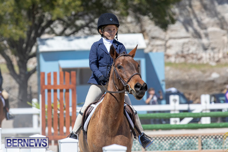 RES Hunter Jumper Show Bermuda, March 16 2019-0585