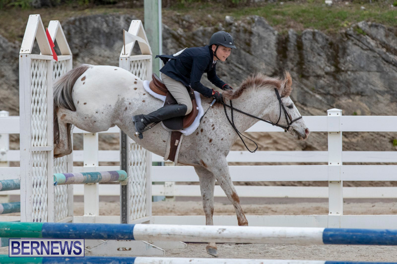 RES-Hunter-Jumper-Show-Bermuda-March-17-2019-1445