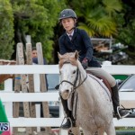 RES Hunter Jumper Show Bermuda, March 17 2019-1446
