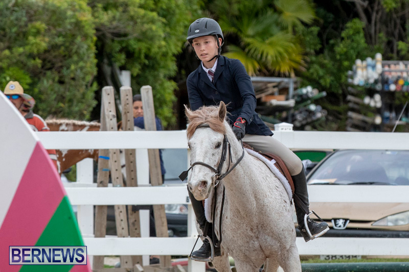 RES-Hunter-Jumper-Show-Bermuda-March-17-2019-1446