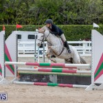 RES Hunter Jumper Show Bermuda, March 17 2019-1447