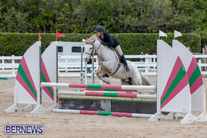 RES-Hunter-Jumper-Show-Bermuda-March-17-2019-1447