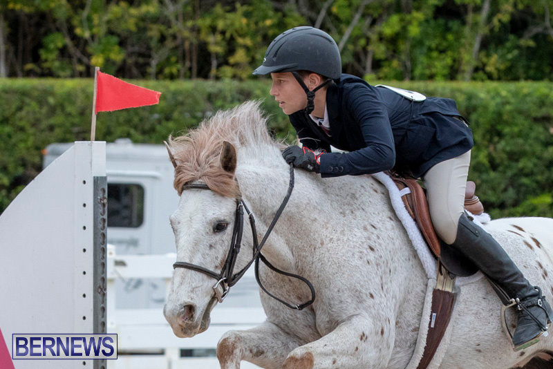 RES-Hunter-Jumper-Show-Bermuda-March-17-2019-1448