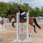 RES Hunter Jumper Show Bermuda, March 17 2019-1483