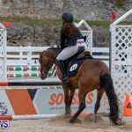 RES Hunter Jumper Show Bermuda, March 17 2019-1489