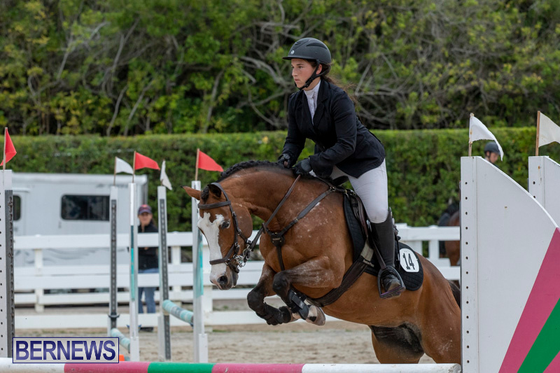 RES-Hunter-Jumper-Show-Bermuda-March-17-2019-1531