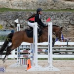 RES Hunter Jumper Show Bermuda, March 17 2019-1536