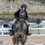 RES Hunter Jumper Show Bermuda, March 17 2019-1539