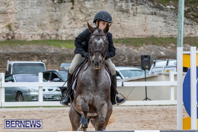 RES-Hunter-Jumper-Show-Bermuda-March-17-2019-1539