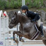 RES Hunter Jumper Show Bermuda, March 17 2019-1547