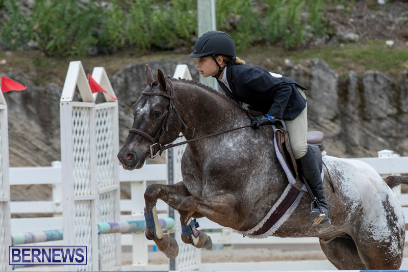 RES-Hunter-Jumper-Show-Bermuda-March-17-2019-1547