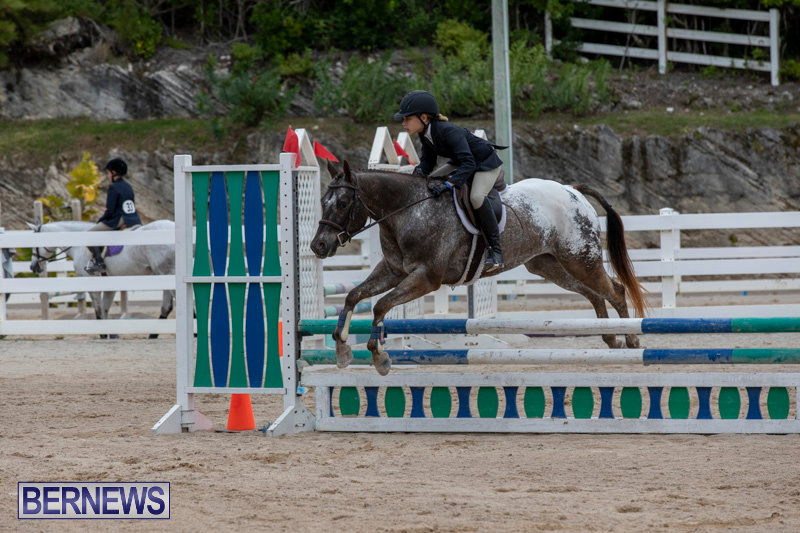 RES-Hunter-Jumper-Show-Bermuda-March-17-2019-1548