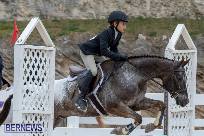 RES-Hunter-Jumper-Show-Bermuda-March-17-2019-1554