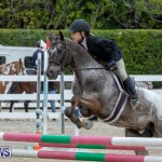 RES Hunter Jumper Show Bermuda, March 17 2019-1559