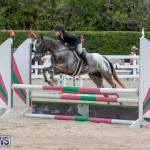 RES Hunter Jumper Show Bermuda, March 17 2019-1560