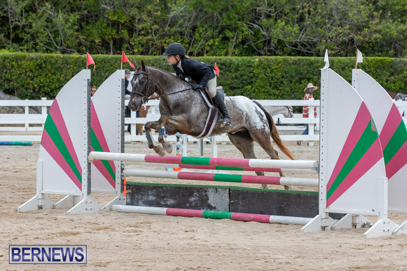RES-Hunter-Jumper-Show-Bermuda-March-17-2019-1560