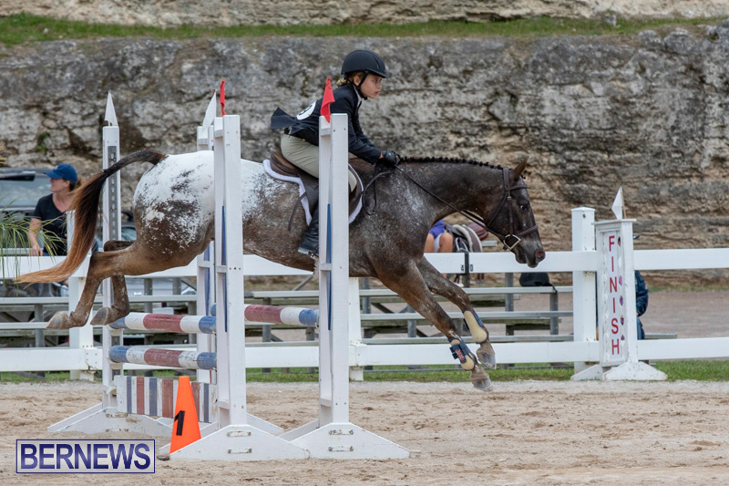 RES-Hunter-Jumper-Show-Bermuda-March-17-2019-1564