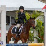 RES Hunter Jumper Show Bermuda, March 17 2019-1566