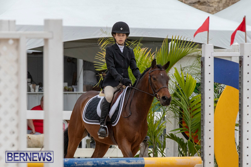 RES-Hunter-Jumper-Show-Bermuda-March-17-2019-1566
