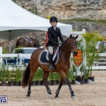 RES Hunter Jumper Show Bermuda, March 17 2019-1568