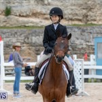 RES Hunter Jumper Show Bermuda, March 17 2019-1571