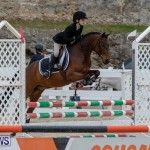 RES Hunter Jumper Show Bermuda, March 17 2019-1576