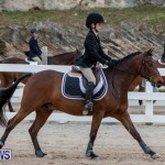 RES Hunter Jumper Show Bermuda, March 17 2019-1581