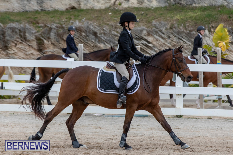 RES-Hunter-Jumper-Show-Bermuda-March-17-2019-1581