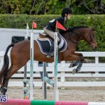 RES Hunter Jumper Show Bermuda, March 17 2019-1585