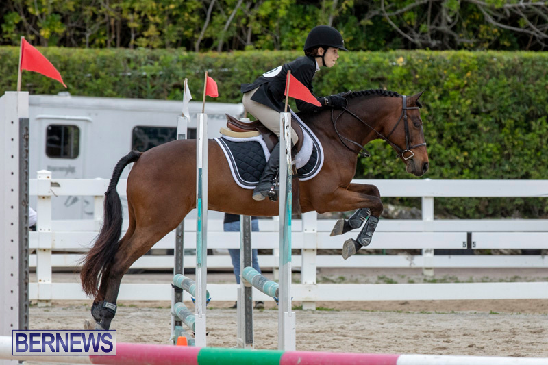 RES-Hunter-Jumper-Show-Bermuda-March-17-2019-1585