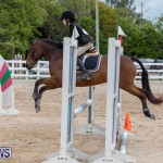 RES Hunter Jumper Show Bermuda, March 17 2019-1599