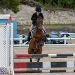 RES Hunter Jumper Show Bermuda, March 17 2019-1608