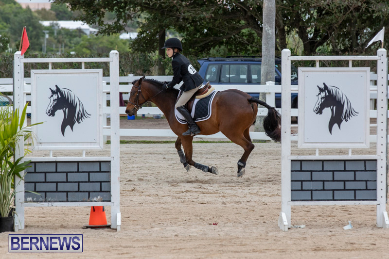 RES-Hunter-Jumper-Show-Bermuda-March-17-2019-1621