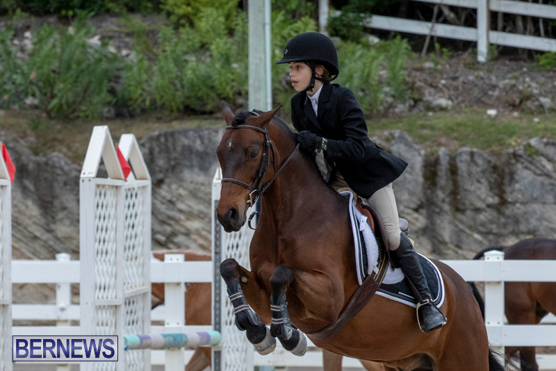 RES-Hunter-Jumper-Show-Bermuda-March-17-2019-1626