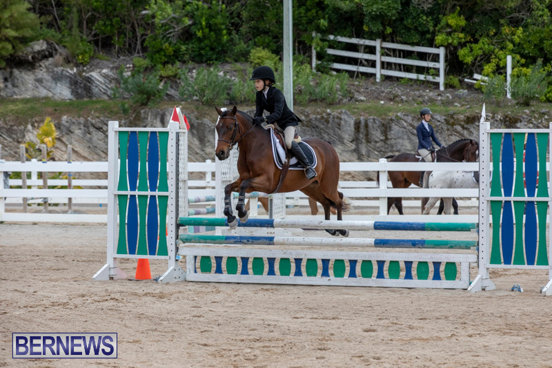 RES-Hunter-Jumper-Show-Bermuda-March-17-2019-1627