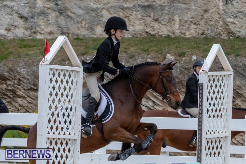 RES-Hunter-Jumper-Show-Bermuda-March-17-2019-1638
