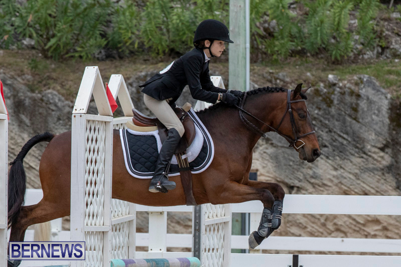 RES-Hunter-Jumper-Show-Bermuda-March-17-2019-1642