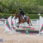 RES Hunter Jumper Show Bermuda, March 17 2019-1648