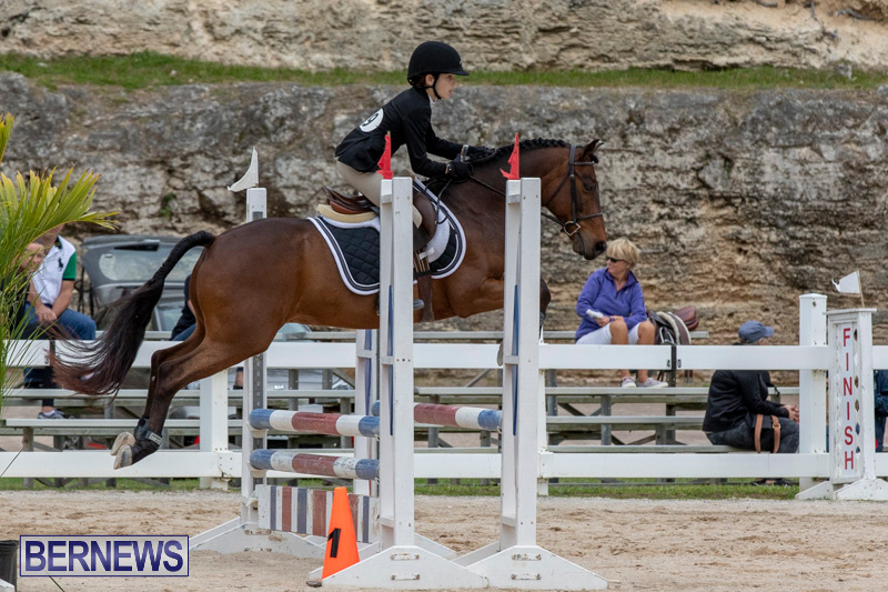 RES-Hunter-Jumper-Show-Bermuda-March-17-2019-1653