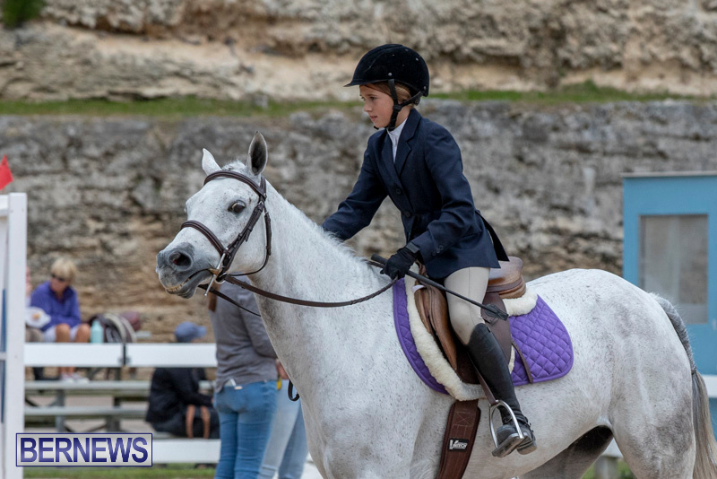 RES-Hunter-Jumper-Show-Bermuda-March-17-2019-1663