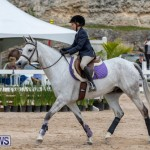 RES Hunter Jumper Show Bermuda, March 17 2019-1666
