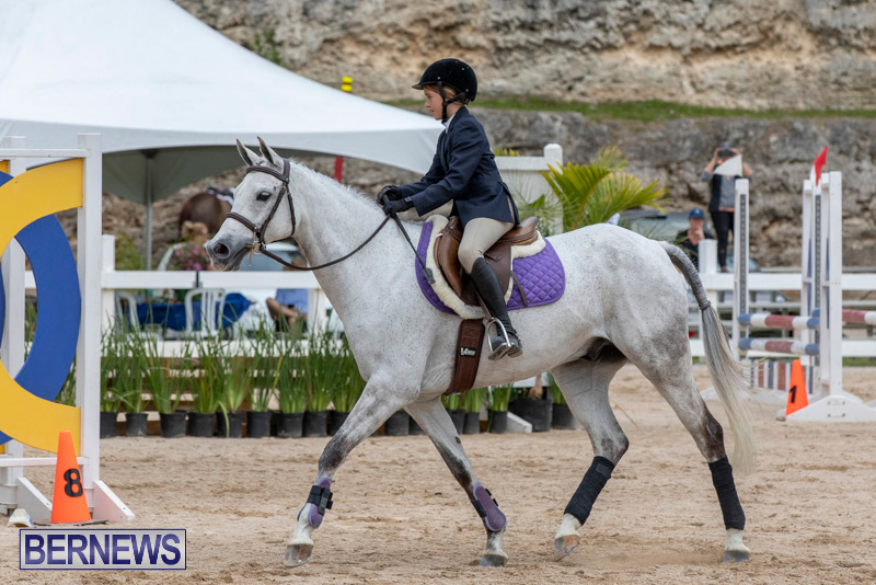 RES-Hunter-Jumper-Show-Bermuda-March-17-2019-1666